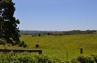 Picture of Lot 428 Cameron Park, Mcleans Ridges NSW 2480