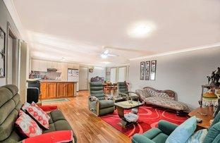 17 Swansona Avenue, Mount Annan NSW 2567