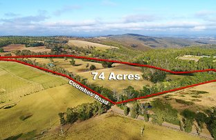 Picture of 160 Coombs Road, Kinglake West VIC 3757