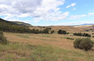 Picture of 3 Omeo Valley Road, Omeo VIC 3898