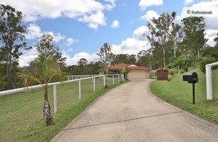Picture of 42-48 Old Bluff Road, Cedar Vale QLD 4285