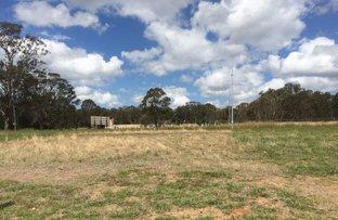 13 Doubletail Lane, Denham Court NSW 2565