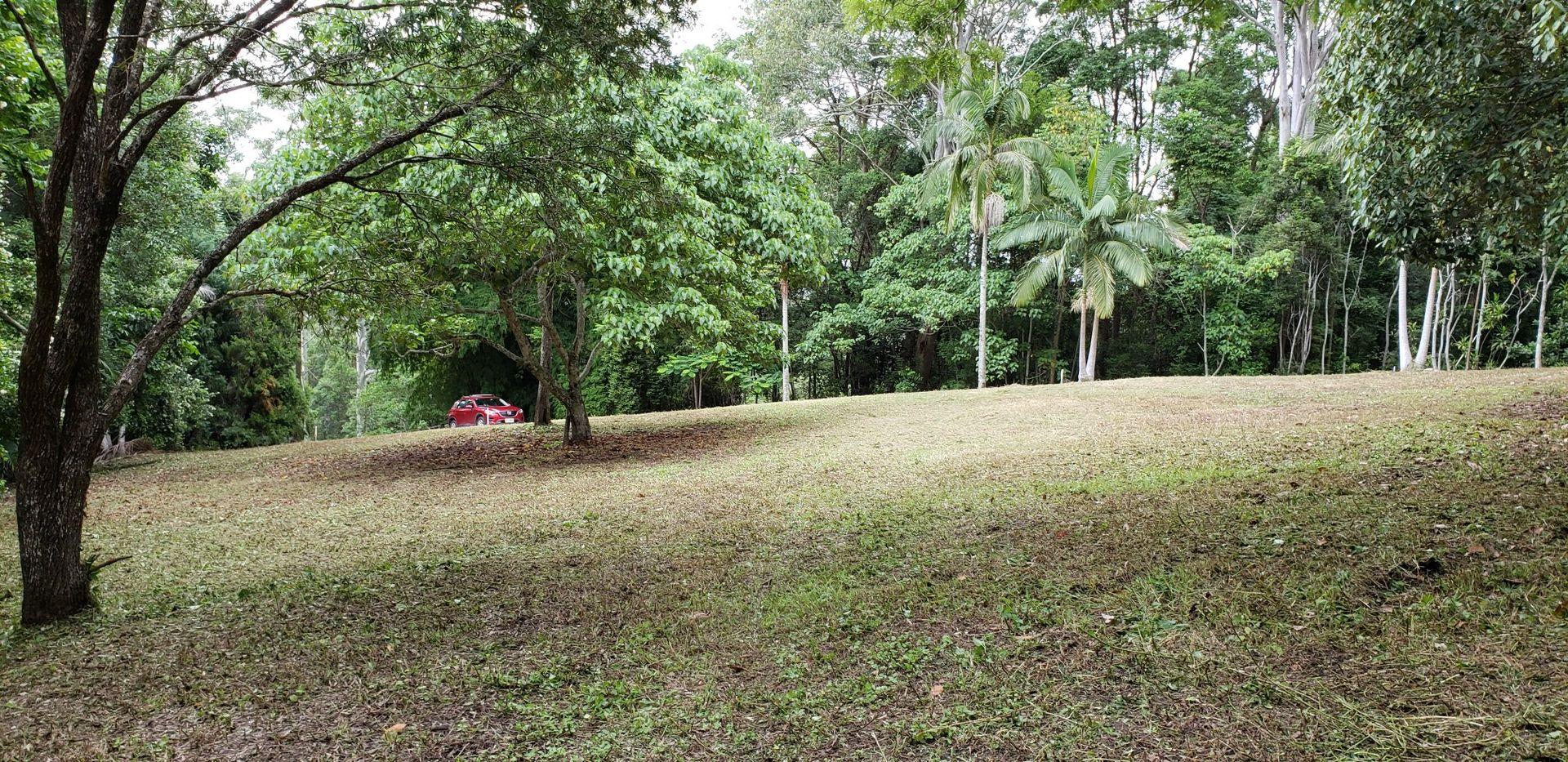 163 Tallgum Avenue, Doonan QLD 4562, Image 0