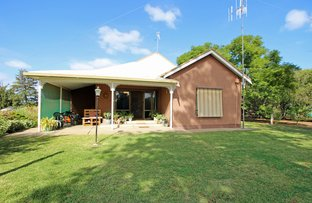 Picture of 145 Ontario Street, Renmark West SA 5341