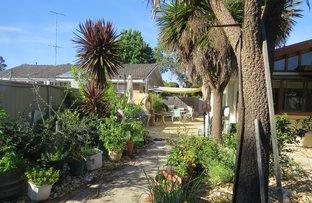 Picture of 36 Playne Street, Heathcote VIC 3523
