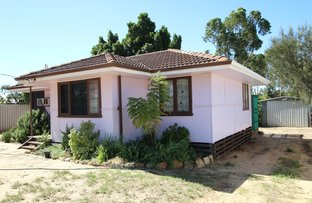 Picture of 14 Rankin St, Kulin WA 6365