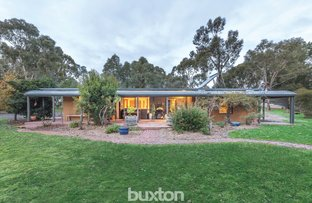 Picture of 38 Back Cemetery Road, Carngham VIC 3351