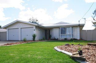Picture of 19 Alexander Avenue, Roma QLD 4455