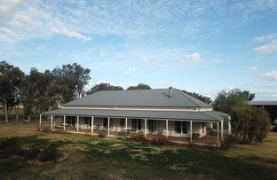Picture of 449 Dyces Lane, Coolamon NSW 2701