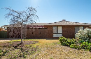 Picture of 44 Sovereign Street, Dubbo NSW 2830