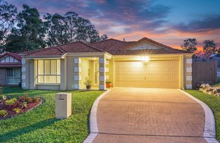 Picture of 11 Worth Court, Upper Coomera QLD 4209