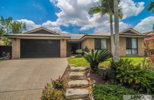 Picture of 41 Mada Drive, Upper Coomera QLD 4209