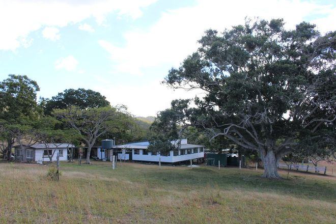 Picture of 415 The Narrows Road, MOUNT LARCOM QLD 4695