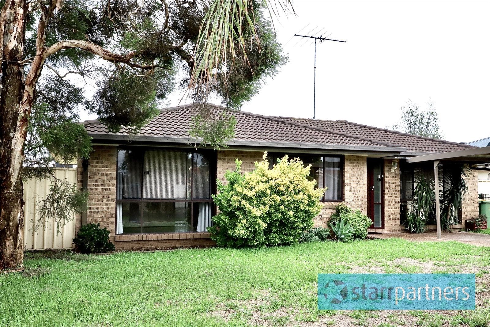 3 Settlers Cres, Bligh Park NSW 2756, Image 0