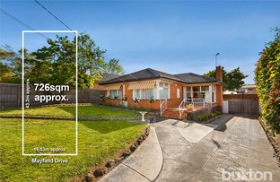 41 Mayfield Drive, Mount Waverley VIC 3149