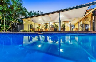Picture of 16 Wolvi Place, Helensvale QLD 4212