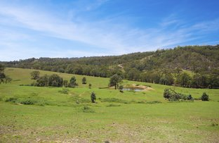 Picture of 787 Inverary Rd, Paddys River NSW 2577