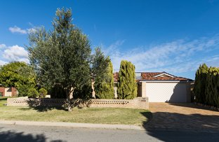 Picture of 10 Plover Way, Stirling WA 6021