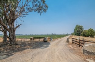 Picture of 670 Mitchell Rd, Kialla VIC 3631