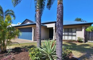 Picture of 13 Palmetto Street, Palm Cove QLD 4879