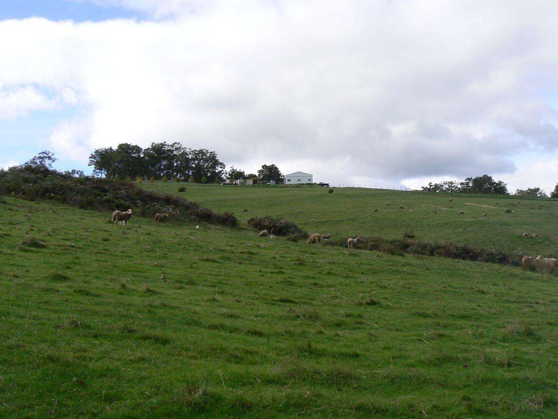 Lot 2 Upper Capel Road, Upper Capel WA 6239, Image 2