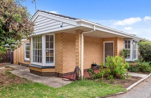 Picture of 1/48 Maitland Street, Mitcham SA 5062