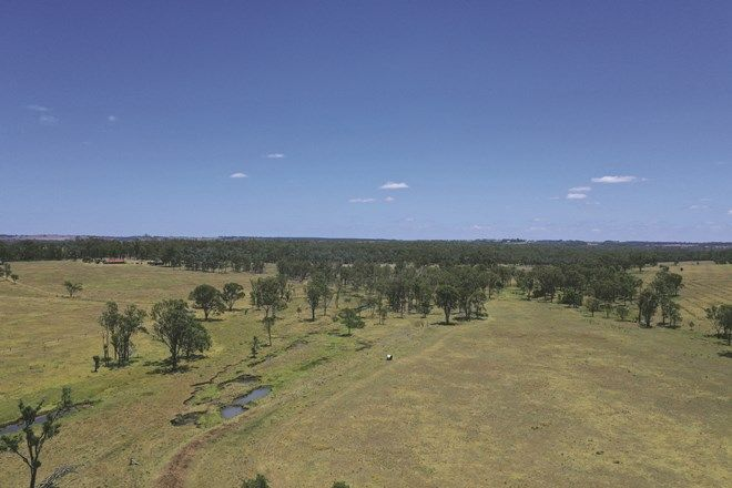 Picture of 351 Flagstone Creek Road, HALY CREEK QLD 4610