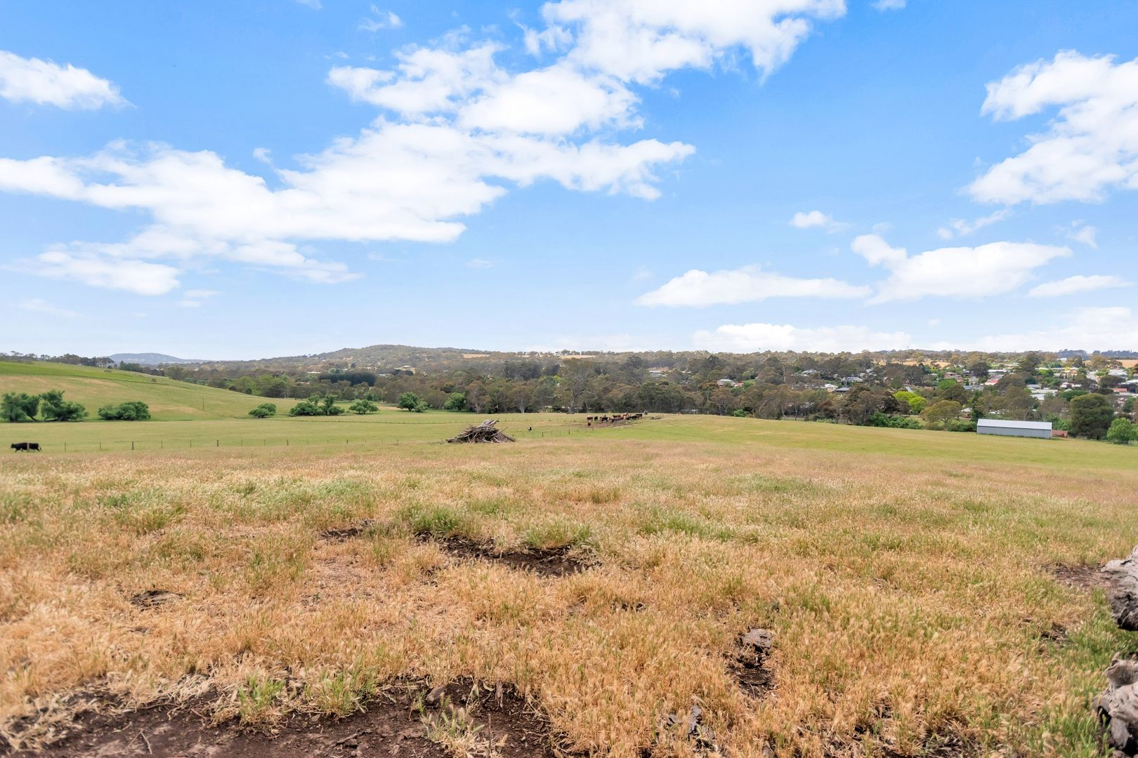 Lot 51 Tiers Road, Woodside SA 5244, Image 2