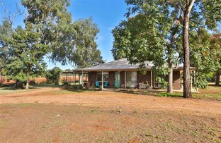 Picture of 12 Freeman Road, Red Cliffs VIC 3496
