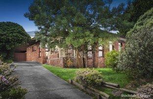 155 Ferntree Gully Road, Mount Waverley VIC 3149