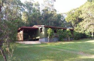 Picture of 14 Mount Spec Road, Paluma QLD 4816