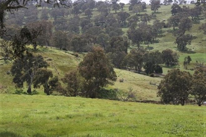 Picture of Lot 203 Petwood Road, NAIRNE SA 5252