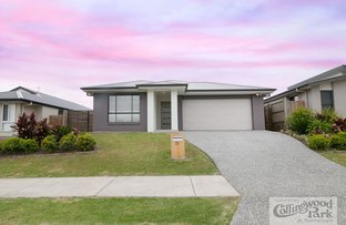 Picture of 13 KERRY O'BRIEN STREET, Collingwood Park QLD 4301