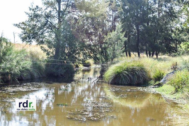 Picture of 243 Back Creek Road, NARRABRI NSW 2390