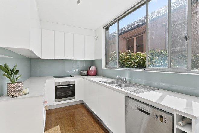 Picture of 2/14 Dutruc Street, RANDWICK NSW 2031