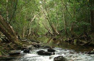 998 Koah Road, Koah QLD 4881