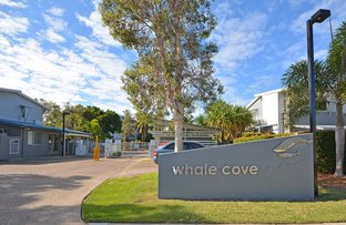 Picture of 52/68 Pulgul Street, Urangan QLD 4655