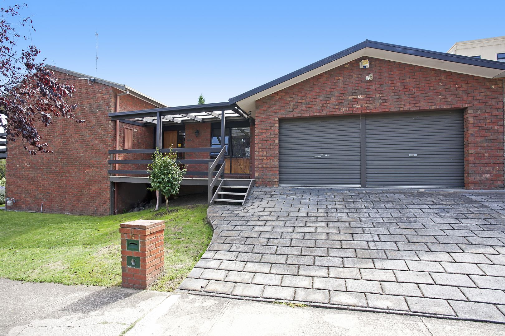 19 Louis Court, Newtown VIC 3220, Image 1