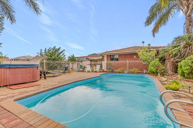 Picture of 11 Walcha Way, ARMADALE WA 6112