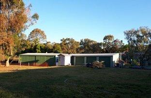 Picture of 109 Riflebird Drive, Upper Caboolture QLD 4510