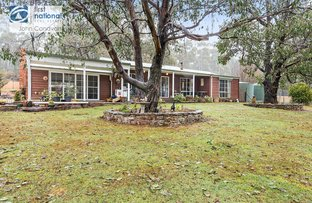 2777 Mansfield-Whitfield Road, Tolmie VIC 3723