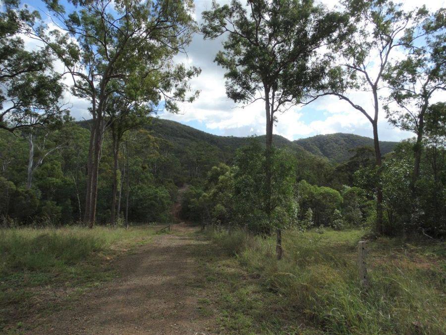 907 Hills Road, Mount Maria QLD 4674, Image 0