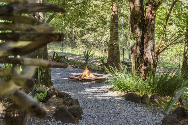 Picture of 393 Lillian Rock Road, LILLIAN ROCK NSW 2480
