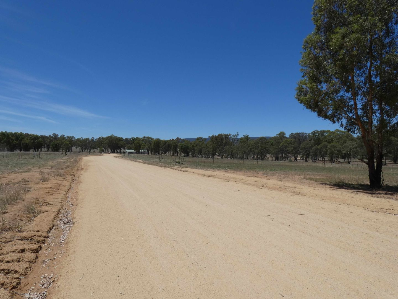 BendickMurrell Road, Bendick Murrell NSW 2803, Image 2