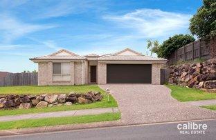 3 O'Brien Court, Collingwood Park QLD 4301