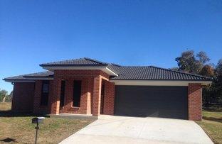 Bradley , Grenfell NSW 2810