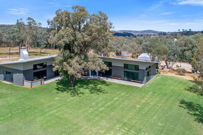 Picture of 448 Lowes Creek Road, QUIRINDI NSW 2343