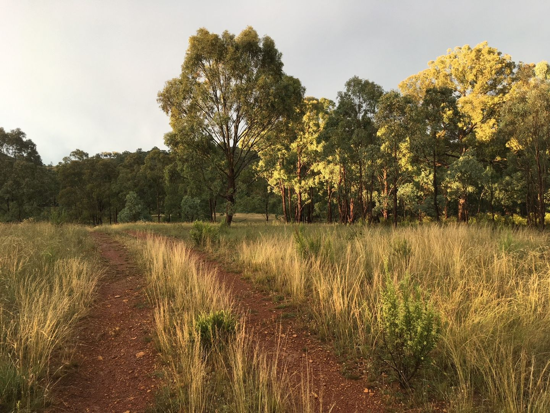 430 Sallys Flat Road, Mudgee NSW 2850, Image 1