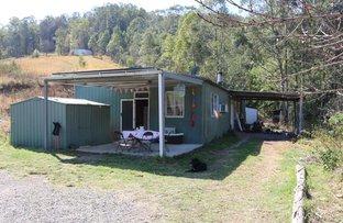 Picture of 196 Bobin Creek Road, Bobin NSW 2429