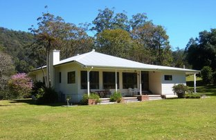 2240 Darkwood Road, Thora NSW 2454